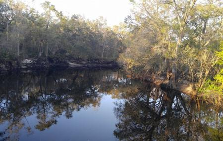 Green Swamp Wilderness Preserve Image