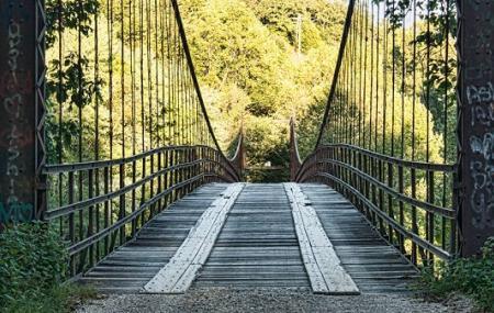 Swinging Bridge Image