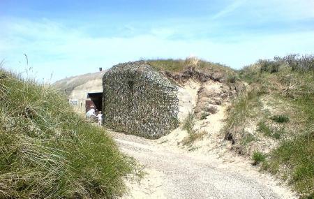 Skagen Bunker-museum Image