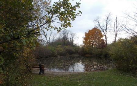 Fox River Shores Forest Preserve Image