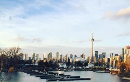 Toronto Island Marina Image