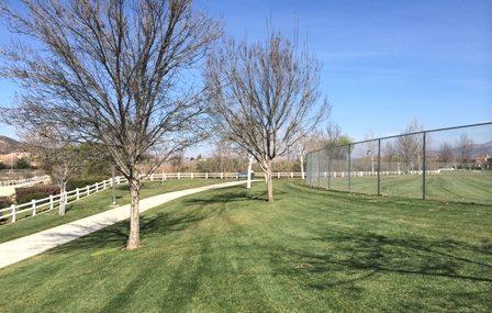 Abelia Sports Park Image