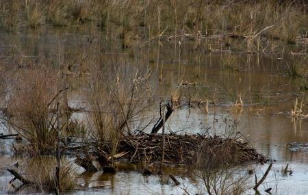 Rocky River Nature Park Image