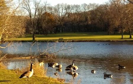 Greenfield Park Pavilion Image