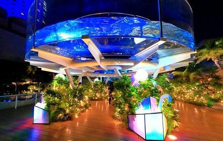 Sunshine International Aquarium Image