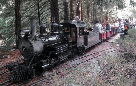 Redwood Valley Railway Image