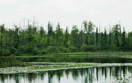 Wixom Habitat Image