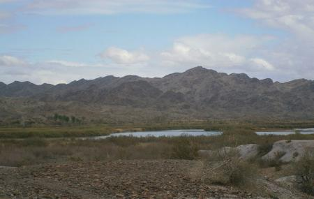 Picacho State Recreation Area Image