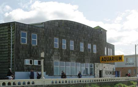 Seaside Aquarium Image