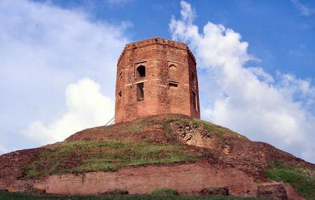 Chaukhandi Stupa Image