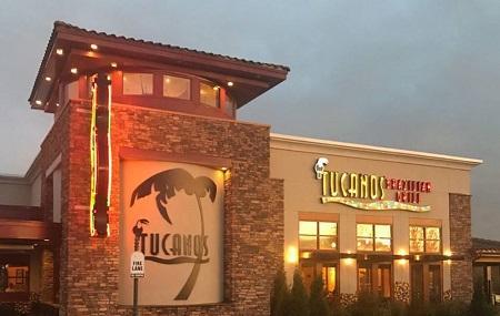 Tucanos Image