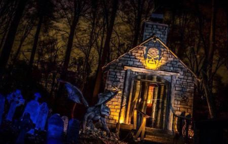 Markoffs Haunted Forest Image