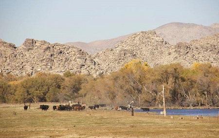 Mojave Narrows Regional Park Image
