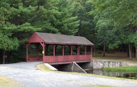 Stratton Brook State Park Image