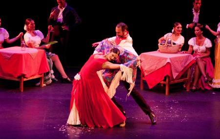 Ballet Flamenco De Madrid Image