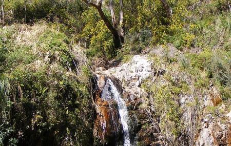 Waterfall Gully Image