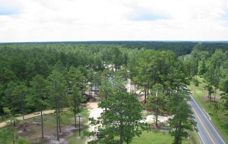 Bladen Lakes State Forest, Garland