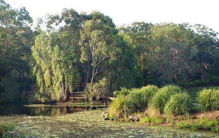 Gold Coast Regional Botanical Gardens Image