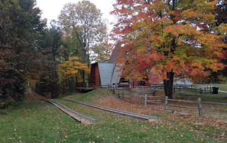Midland City Forest Image