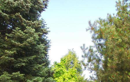 Andrews Arboretum Image