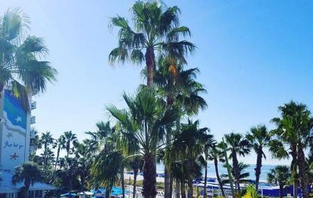 8a1b0cd228 How to Reach Tradewinds Island Grand Resort