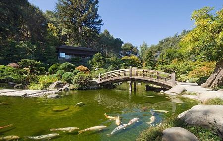 Hakone Gardens Image