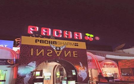 Pacha Nightclub Image
