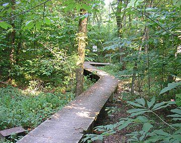 Beargrass Creek State Nature Preserve Image