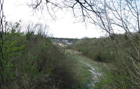 Cherry Hinton Chalk Pits Image
