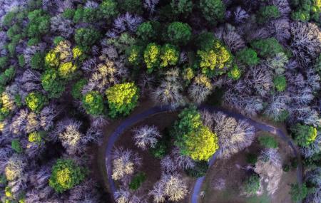R.l. Cook Park Image