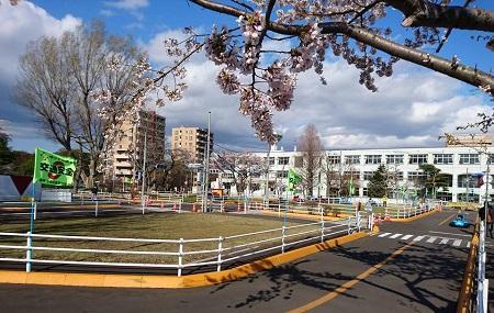 Yanagawa Kotsu Park Image