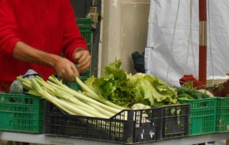 Mercado Agroecologico Image