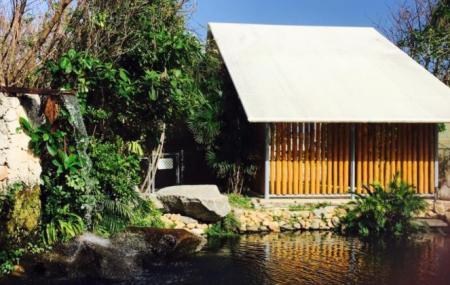 Ichimura Miami Japanese Garden Image
