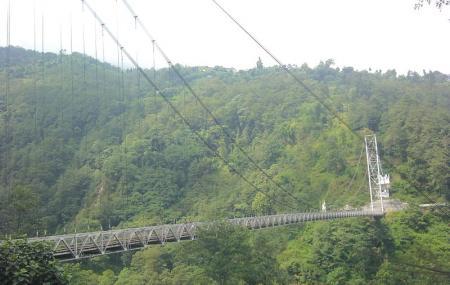 Singshore Bridge Image