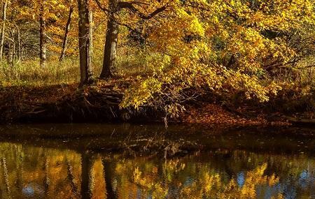 Columbus County Park Image