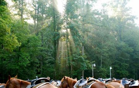 Sugarland Riding Stables Image