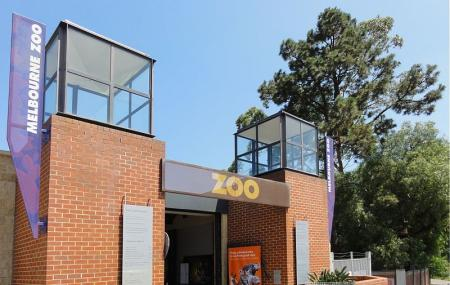 Melbourne Zoo Image
