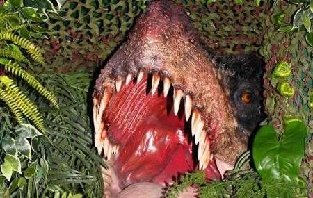 Torquay's Dinosaur World Image