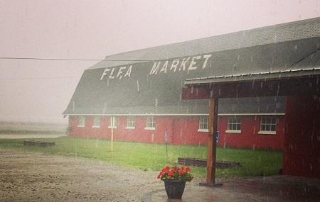 Wurzel's Flea Market Image