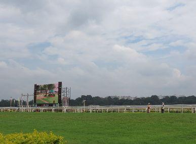 Race Course Image