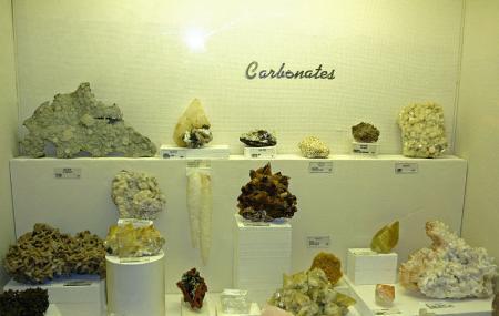 Museum Of Geology, Rapid City | Reviews | Ticket Price | Timings ...