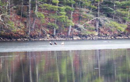 Delaware Highlands Conservancy Image