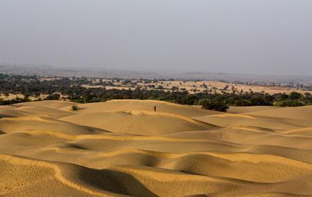 Thar Desert Image