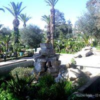 Zoo Le Belvedere A Tunis Image