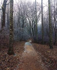 Saunders-monticello Trail Image