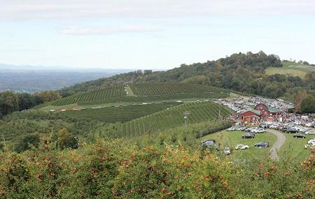 Carter Mountain Orchard Image