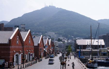 Mount Hakodate Image