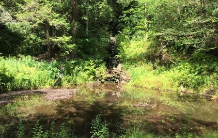 Graystones Preserve Mud Run Image