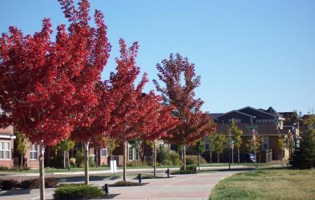 Golden Hills Park Image