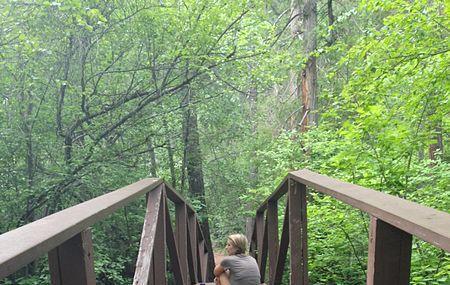 Mount Shasta City Park Image